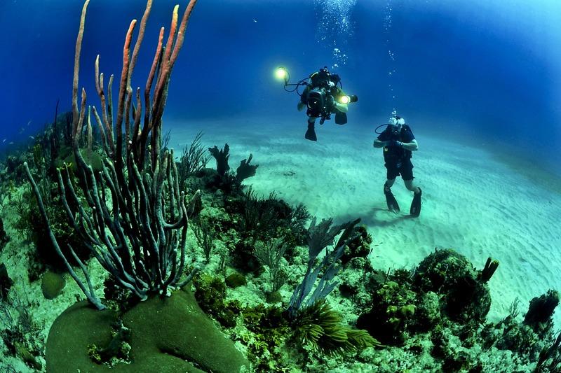País apresenta projetos para oceanos<br />