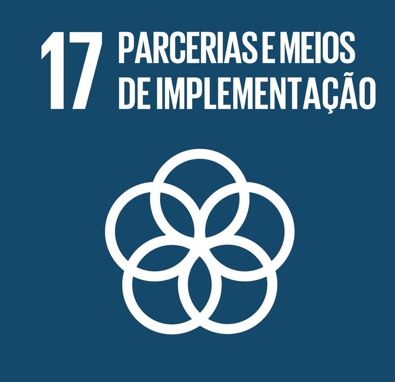 Sobre o ODS 17 - Parcerias e meios de implementação