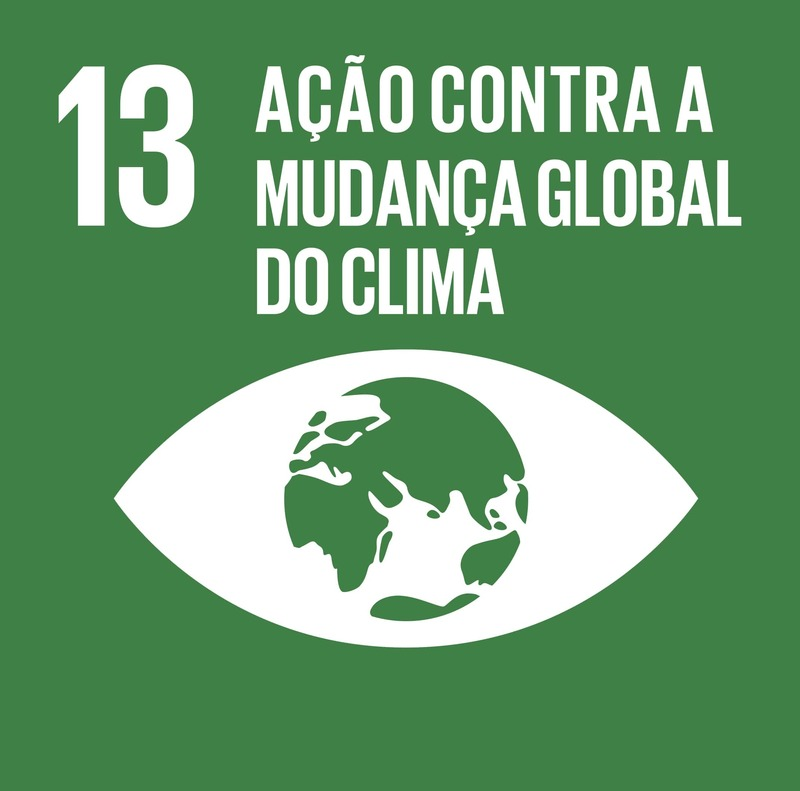 Sobre o ODS 13 - Ação contra a mudança global do clima