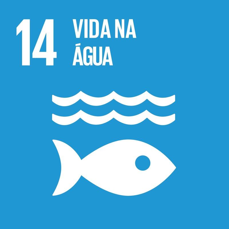Sobre o ODS 14 - Vida na água