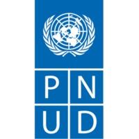 PNUD-q.png