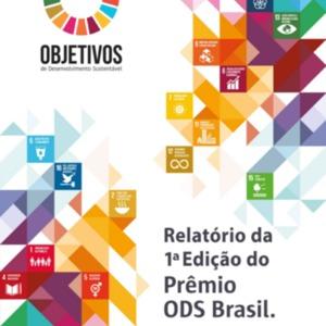 Relatório da primeira edição do Prêmio ODS Brasil 2018.PNG